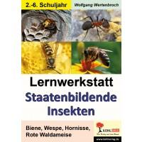 Lernwerkstatt Staatenbildende Insekten