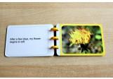 Dandelion Booklet